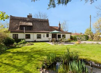 Thumbnail 4 bed cottage for sale in Bunwell Street, Bunwell, Norwich