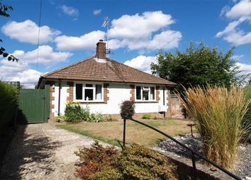 Thumbnail 3 bed detached bungalow for sale in High Lane, Haslemere, Surrey