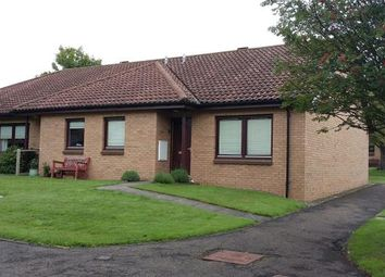 Thumbnail 2 bed bungalow to rent in Gullane