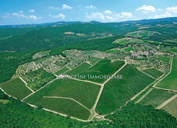 Thumbnail Farm for sale in Gaiole In Chianti, Tuscany, Italy