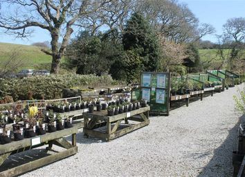 Thumbnail Retail premises for sale in Cornish Garden Nurseries, Barras Moor Farm, Truro