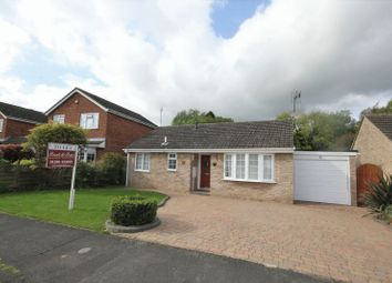 Thumbnail 2 bed bungalow to rent in Badgers Way, Buckingham