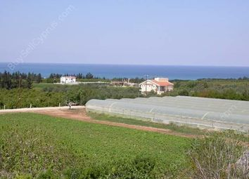 Thumbnail Land for sale in Emba, Paphos, Cyprus