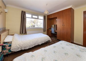 Walker Wood, Baildon, Shipley BD17
