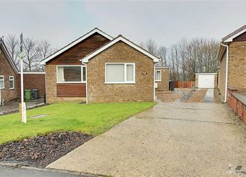 Thumbnail 3 bed detached bungalow to rent in Hollythorpe Close, Hasland, Chesterfield, Debyshire