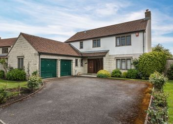 Thumbnail 4 bed detached house for sale in Petvin Close, Street