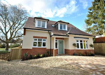 Thumbnail 4 bed detached house for sale in Greenfield Avenue, Abington, Northampton