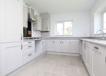 Thumbnail 3 bed bungalow for sale in North Bersted Street, Bognor Regis