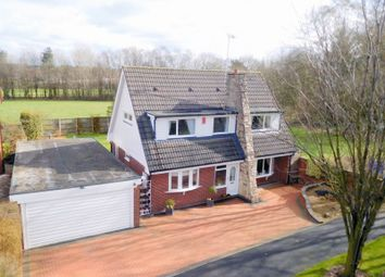 Thumbnail 3 bedroom detached house for sale in Hargreave Close, Meir Park, Stoke-On-Trent