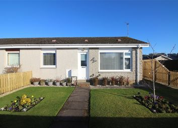 Thumbnail 2 bed semi-detached bungalow for sale in Argentier Road, Forres