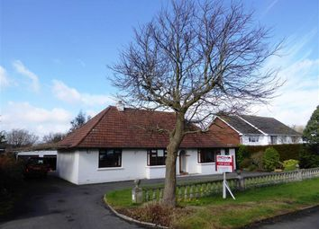 Thumbnail 4 bed detached bungalow for sale in Parkwood Road, Hastings, East Sussex