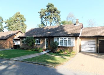 Thumbnail 3 bed detached bungalow for sale in The Sands, Whitehill