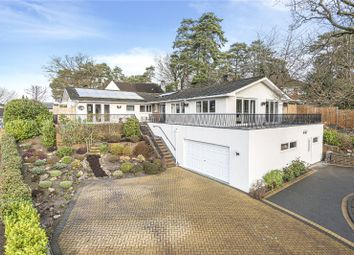 Thumbnail 5 bed bungalow to rent in Oriel Hill, Camberley
