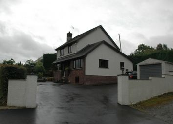 Thumbnail 3 bed detached house for sale in Waungilwen, Llandysul, Carmarthenshire