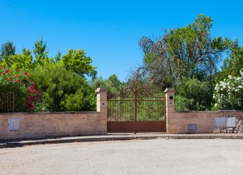 Thumbnail Land for sale in 07420, Sa Pobla, Spain