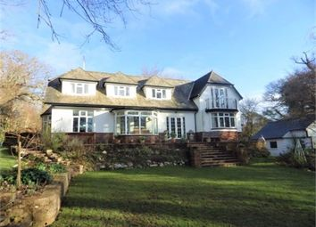 Thumbnail 4 bed detached house to rent in St Johns Road, Exmouth, Exmouth
