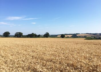 Thumbnail Land for sale in Udimore Road, Rye