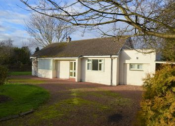 Thumbnail 3 bed detached bungalow for sale in North Lane, Norham, Berwick Upon Tweed, Northumberland