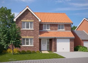 Thumbnail 4 bed detached house for sale in The Camber, Blackthorn Lane, Cranbrook, Exeter, Devon