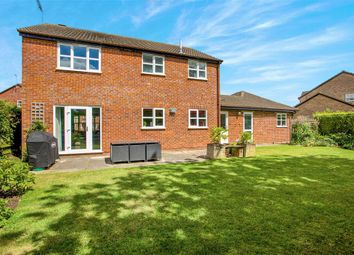 Thumbnail 4 bedroom detached house for sale in Drayhorse Road, Ramsey, Huntingdon