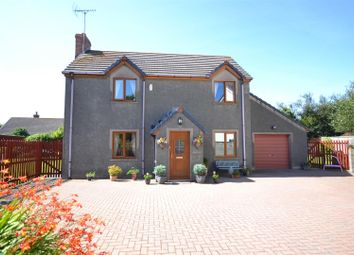 Thumbnail 3 bedroom detached house for sale in Hill Mountain, Houghton, Milford Haven