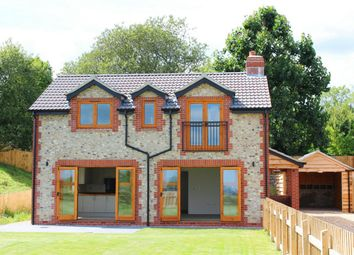 Thumbnail 4 bed detached house for sale in Hare Lane, Buckland St Mary, Somerset