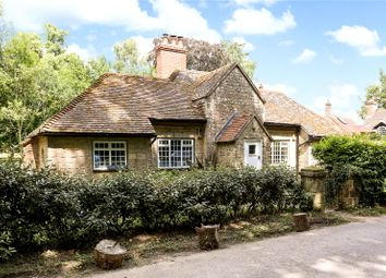 3 bed detached bungalow for sale in Stedham, Midhurst, West Sussex GU29