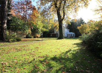 Thumbnail 4 bed detached house for sale in London Road, Windlesham, Surrey