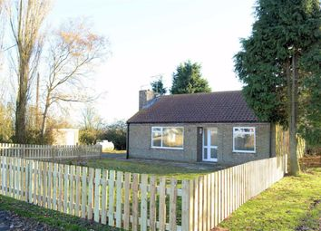 Thumbnail 3 bed detached bungalow to rent in Mill Lane, Brayton, Selby