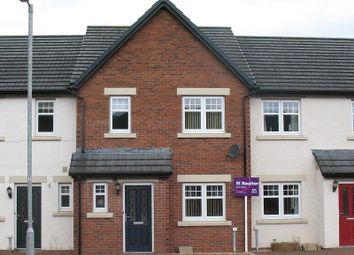 Thumbnail 3 bedroom terraced house for sale in Sydney Gardens, Lockerbie, Dumfries And Galloway.