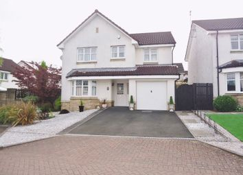Thumbnail 4 bed detached house for sale in Delph Wynd, Tullibody, Alloa