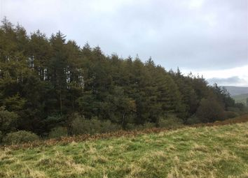 Thumbnail Farm for sale in Spring Hill Cottage Woodland, Clun, Craven Arms, Shropshire