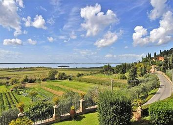 Thumbnail 7 bed detached house for sale in Lucca, Tuscany, Italy