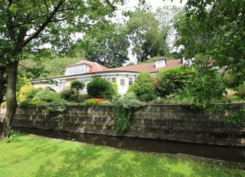 Thumbnail 4 bed bungalow for sale in Hedworth Lane, Jarrow, Tyne And Wear