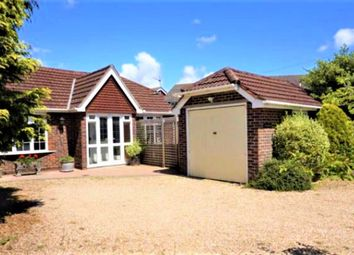 Thumbnail 3 bed bungalow to rent in Southleigh Road, Emsworth