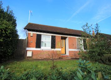 Thumbnail 4 bed detached bungalow to rent in Maldon Road, Colchester