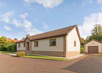 Thumbnail 4 bed bungalow for sale in Cemetery Road, Galston, East Ayrshire