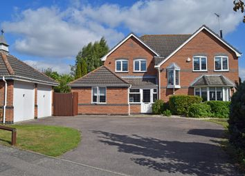 Thumbnail 4 bedroom detached house for sale in Berkeley Close, Ipswich