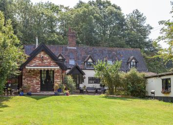 Thumbnail 4 bed cottage for sale in The Street, Flixton, Bungay