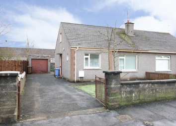 Thumbnail 2 bedroom semi-detached bungalow to rent in Sherbrook Gardens, Dundee