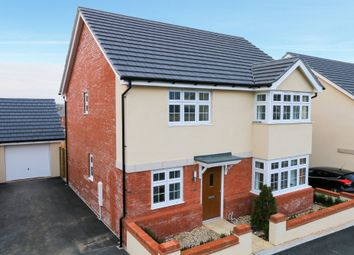 Thumbnail 4 bed detached house for sale in Alford Pasture, Cranbrook, Exeter