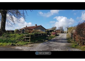 Thumbnail 2 bed bungalow to rent in Blackdown View, Buckland St Mary, Chard