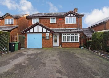 Thumbnail 4 bed detached house to rent in Holdenhurst Close, Clanfield, Waterlooville