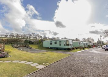 Thumbnail Land for sale in Natland Caravan Park, Natland