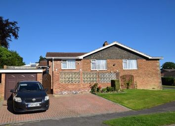 Thumbnail 3 bed bungalow for sale in Holly Drive, Heathfield, East Sussex