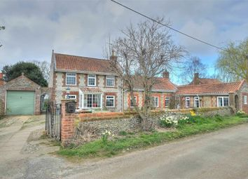 Thumbnail 4 bed detached house for sale in Long Common, Norwich