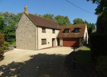 Thumbnail 5 bed detached house for sale in Cedar Lodge, Rodden, Weymouth
