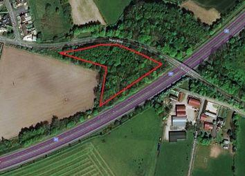 Thumbnail Land for sale in Land At Moira Road/Beechfield Bridge, Hillsborough, County Down