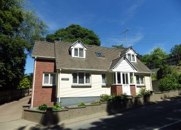 Thumbnail 3 bed detached house for sale in Holsworthy