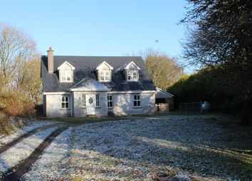 Thumbnail 5 bed detached house for sale in Ballyhogan, Kilreekil, Galway
